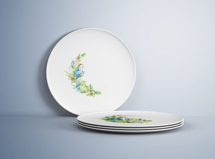 Plates Mockup PSD