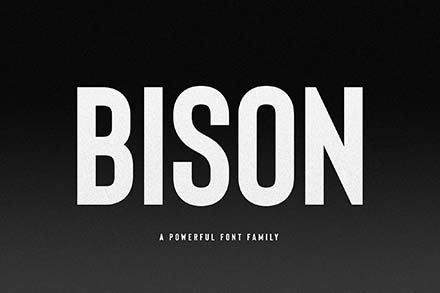 Bison Font