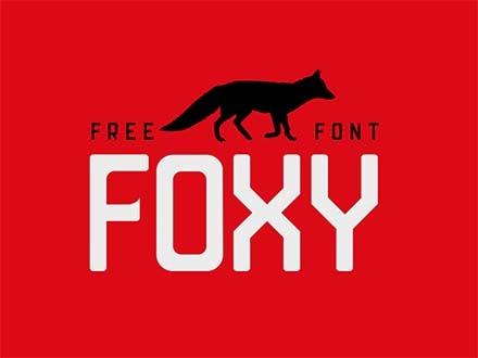 Foxy Sans Serif Font