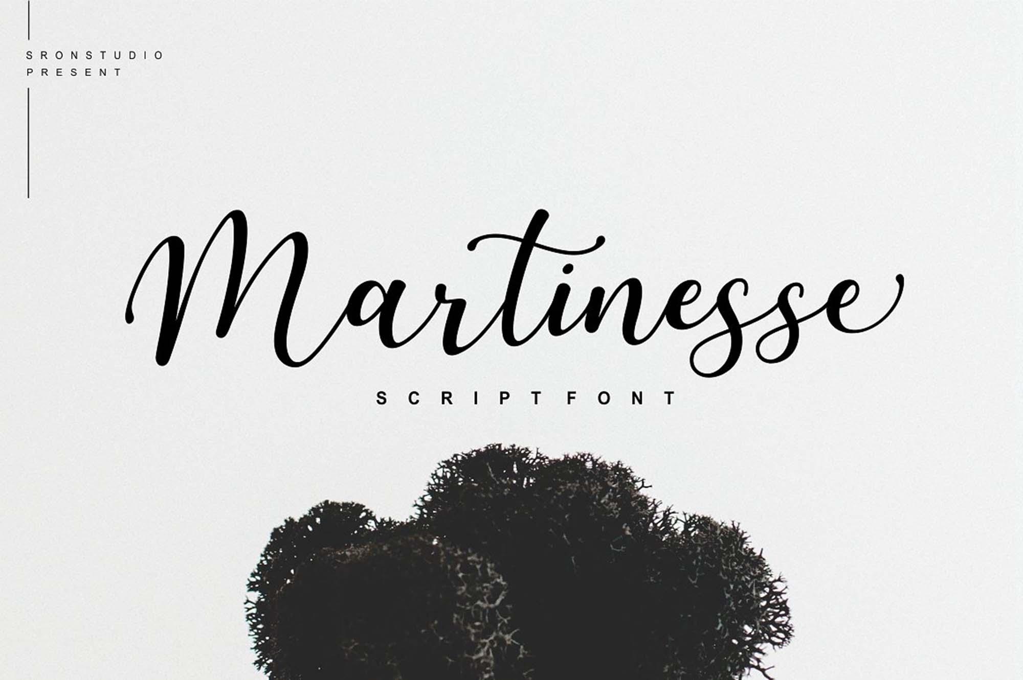 Martinesse Script Font