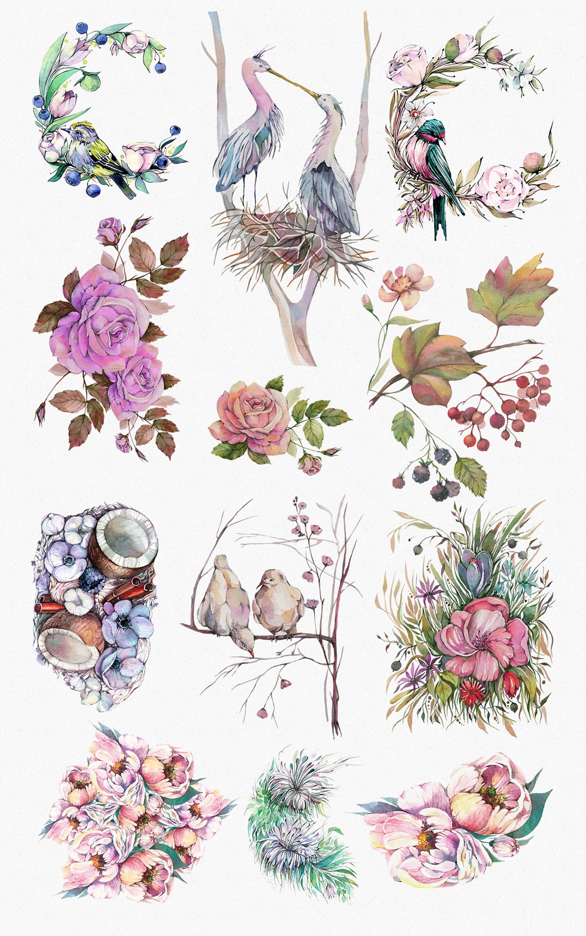 Spring Garden Watercolors PNG