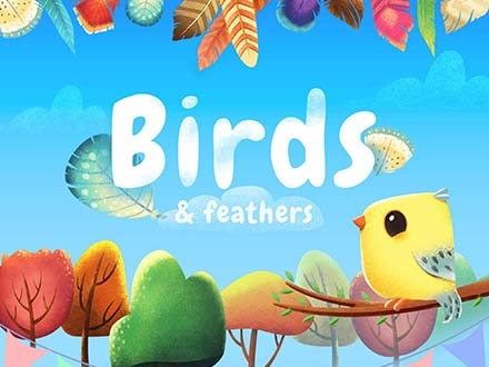 Birds & Feathers Graphic Pack
