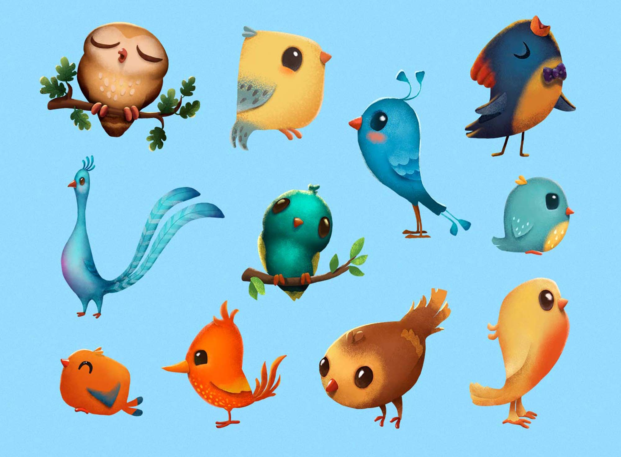 Birds & Feathers Illustrations