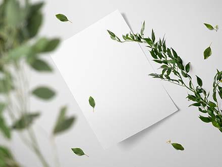 Floral Paper Mockup