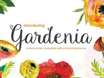 Gardenia Script Font