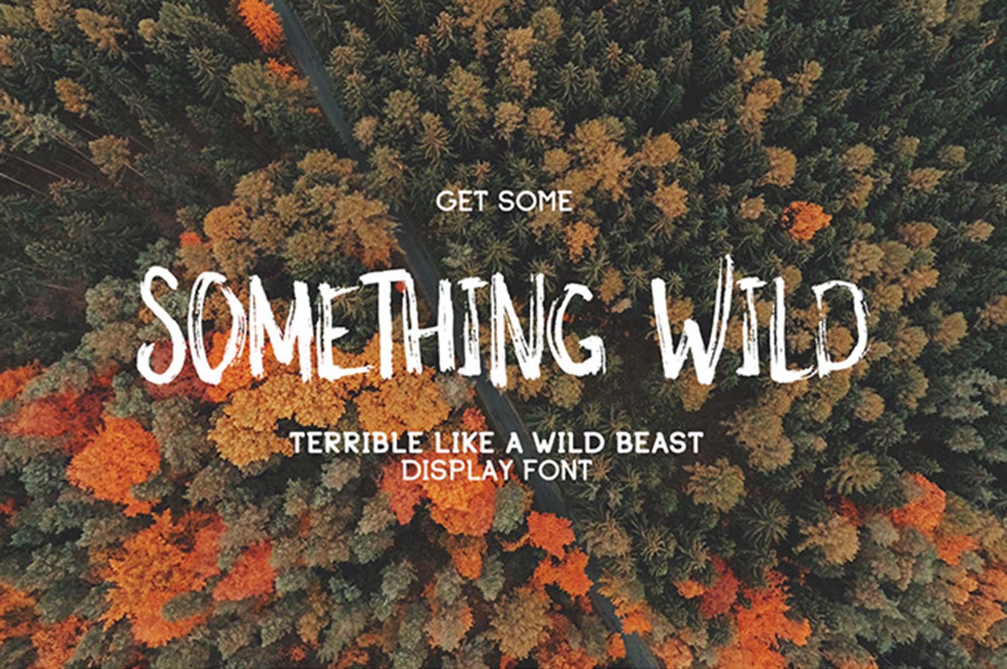 Something Wild Font