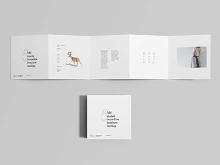5 Fold Brochure Mockup