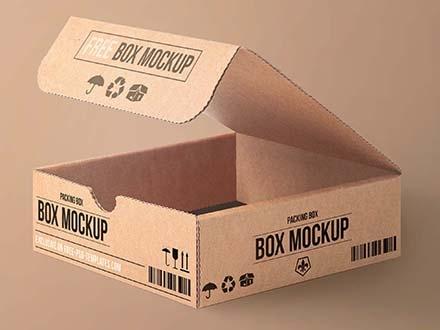 Cartoon Packaging Mockup