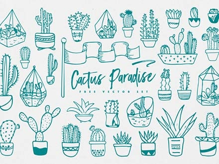 Cactus Vector Illustrations