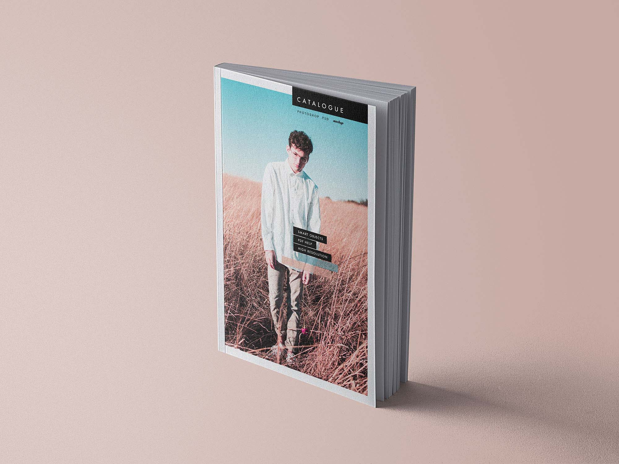 Free Catalog Book Mockup (PSD)