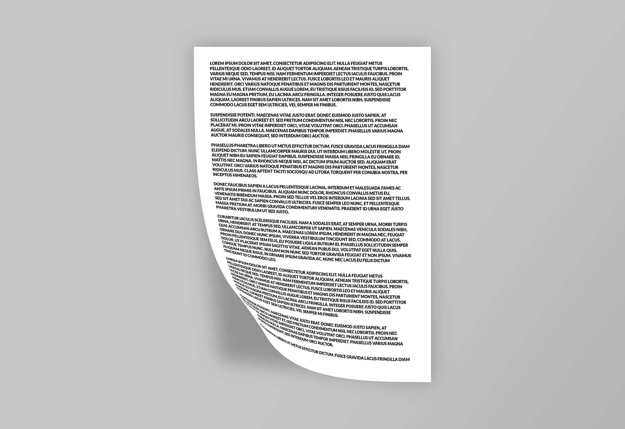 A4 Documents Mockup 1