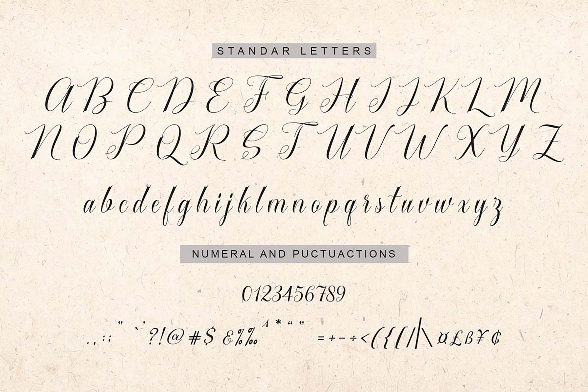 Cataline Script Font Letters