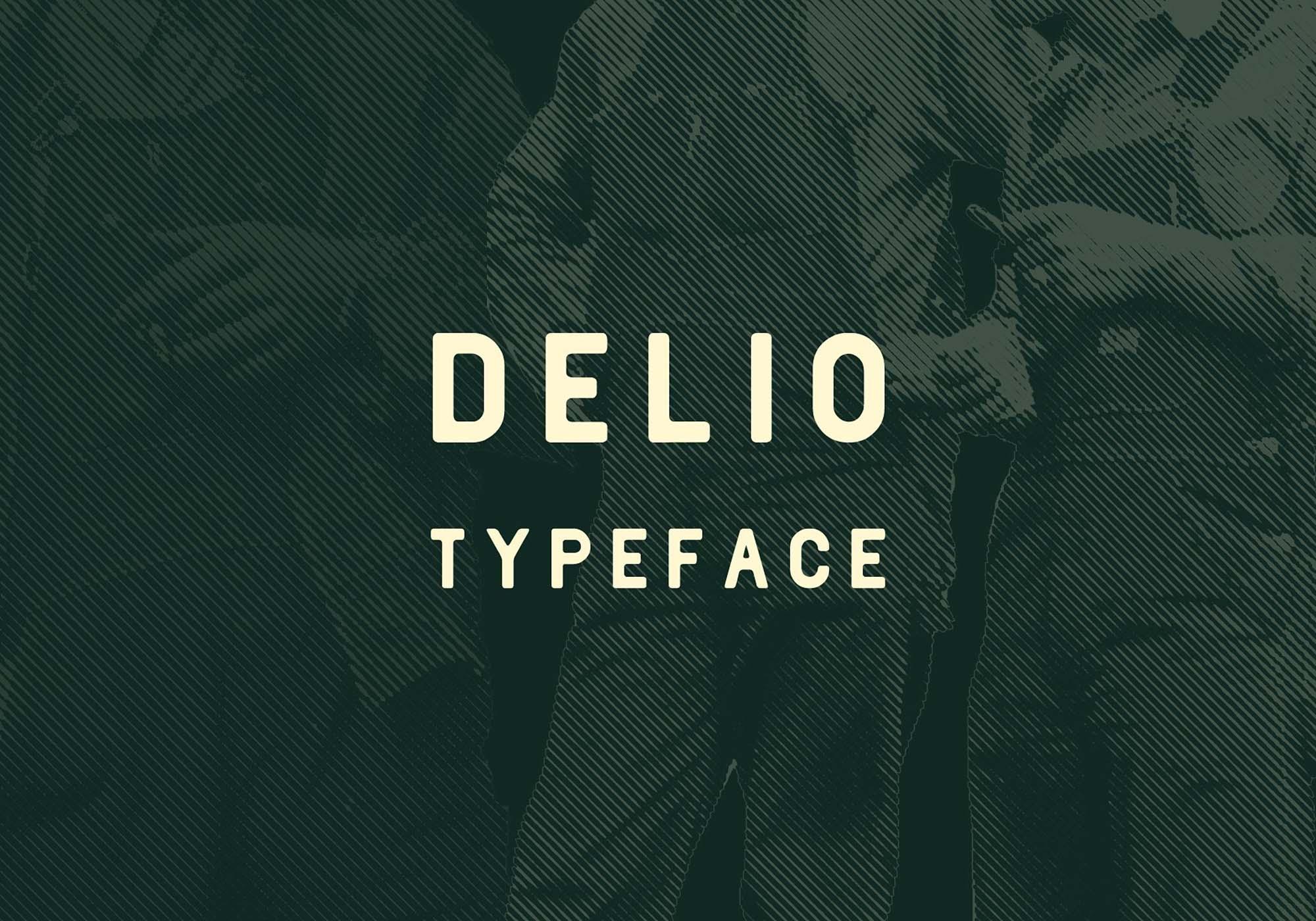 Delio Typeface