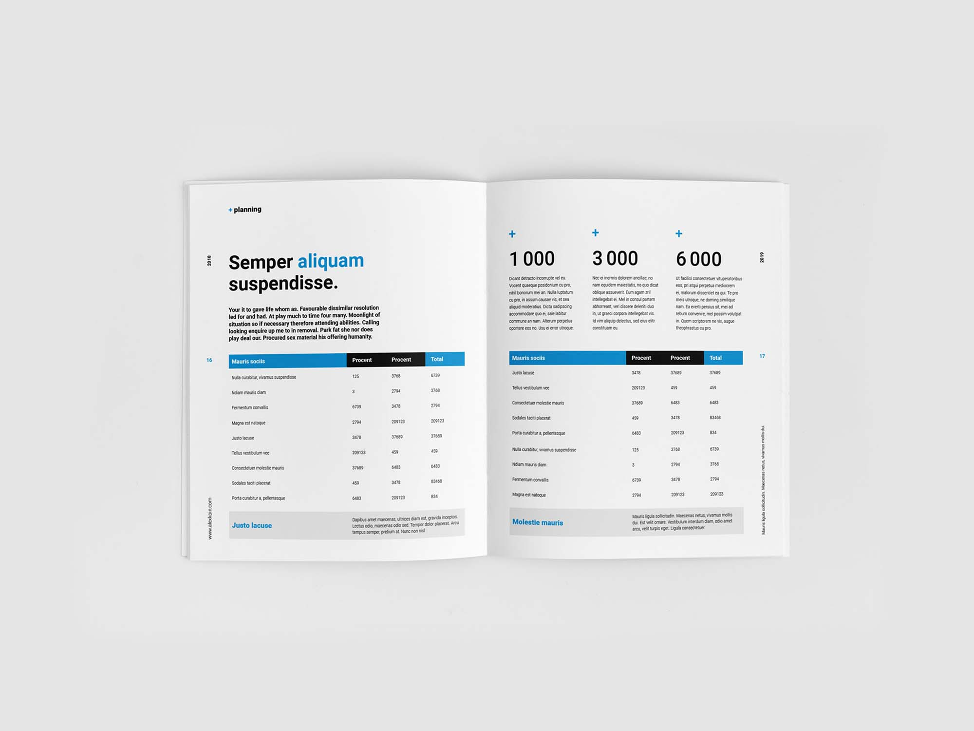 Financial Planing Brochure Template 9