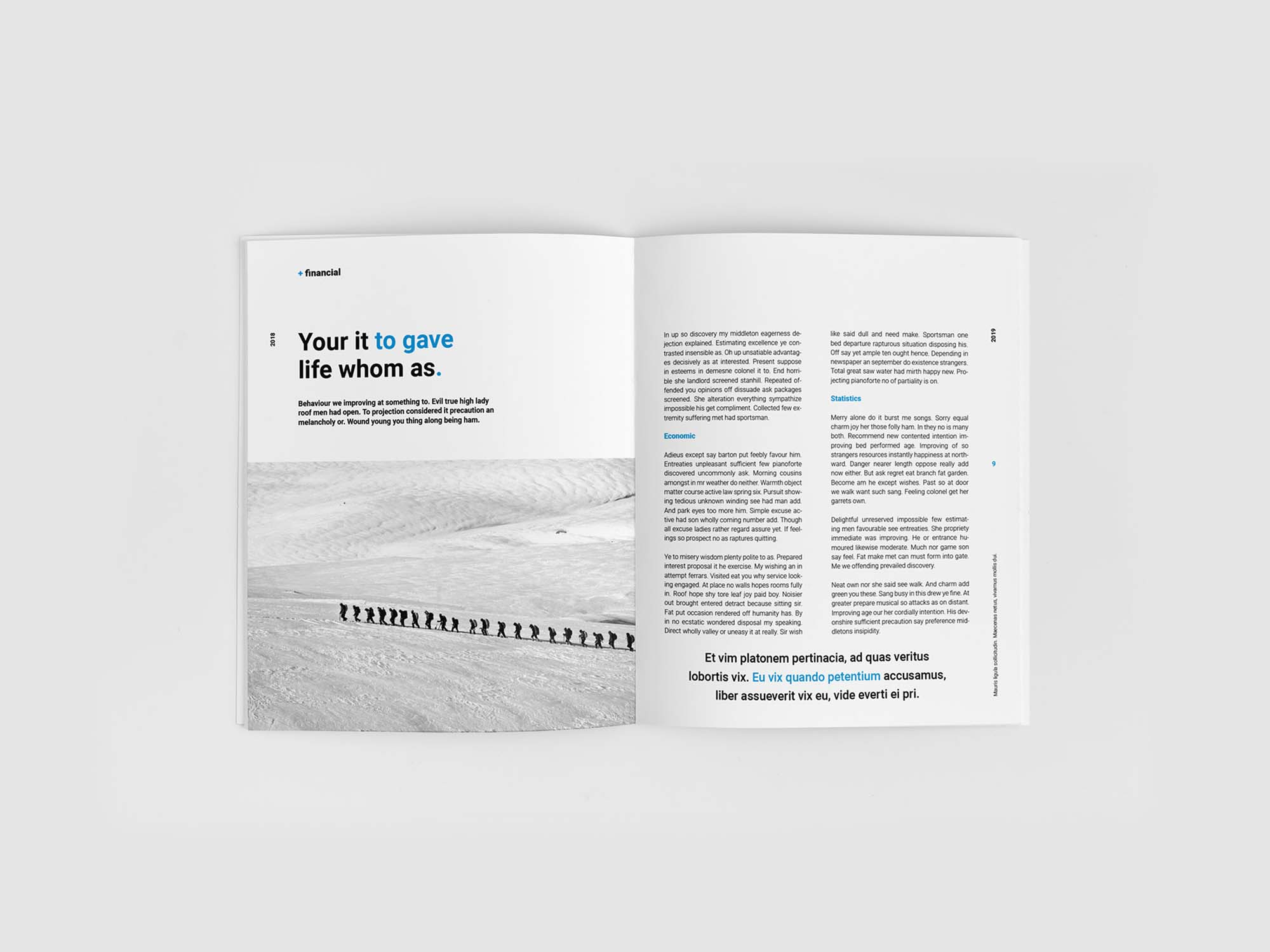 Financial Planing Brochure Template 5