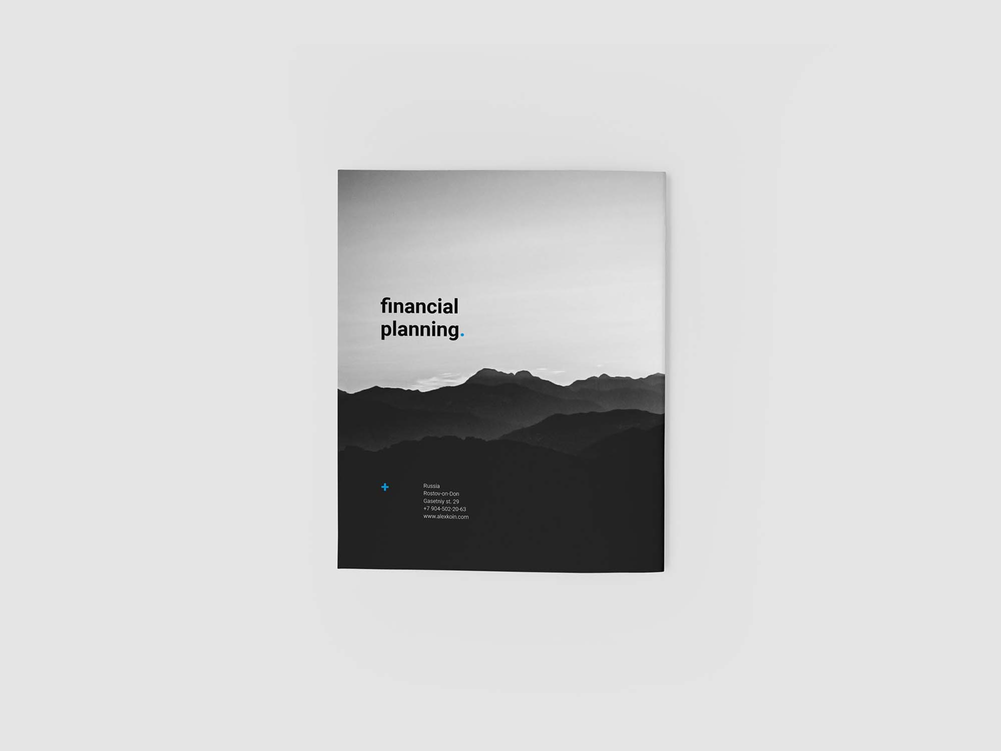 Financial Planing Brochure Template 4