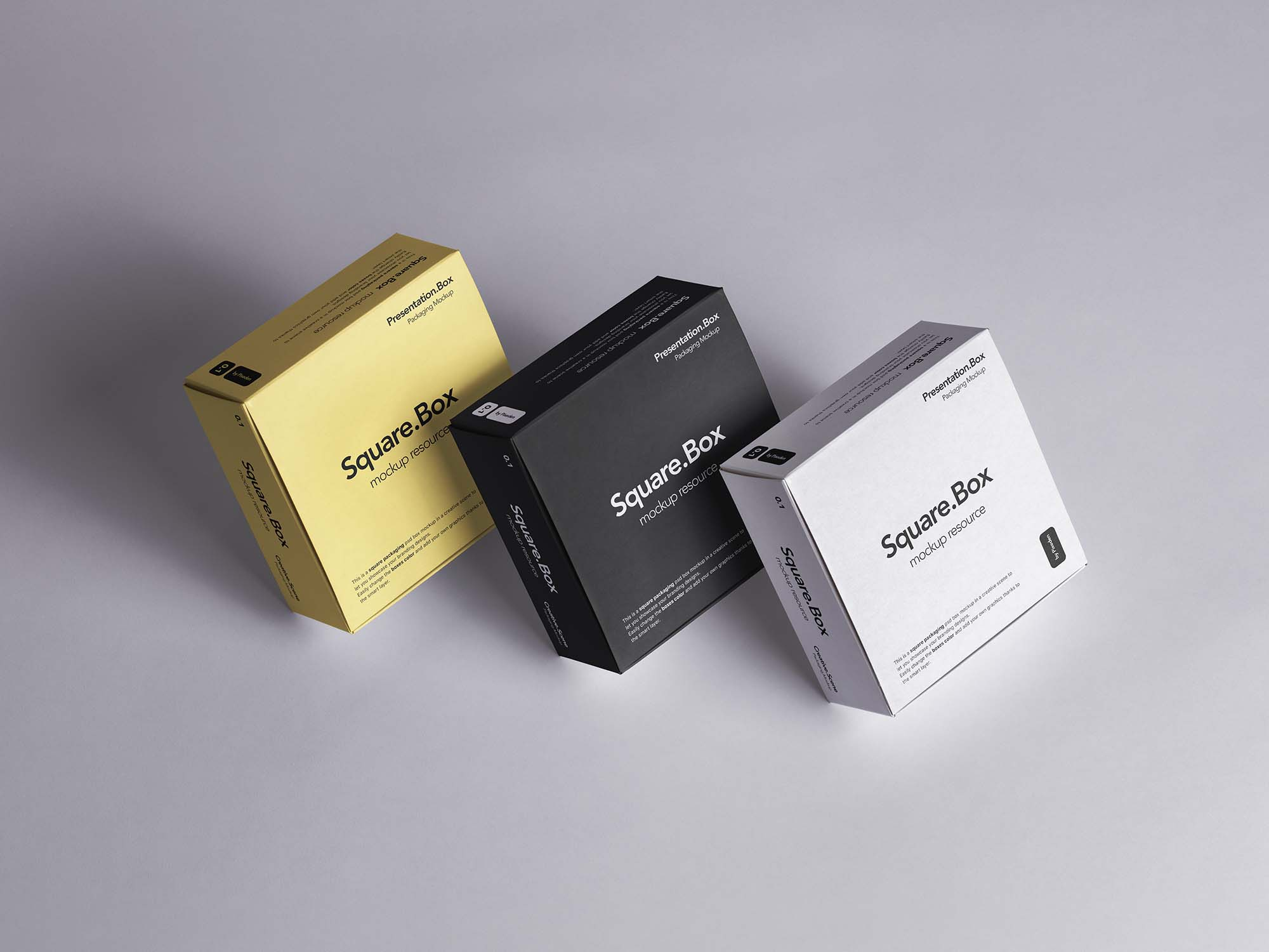 Square Box Package Mockup