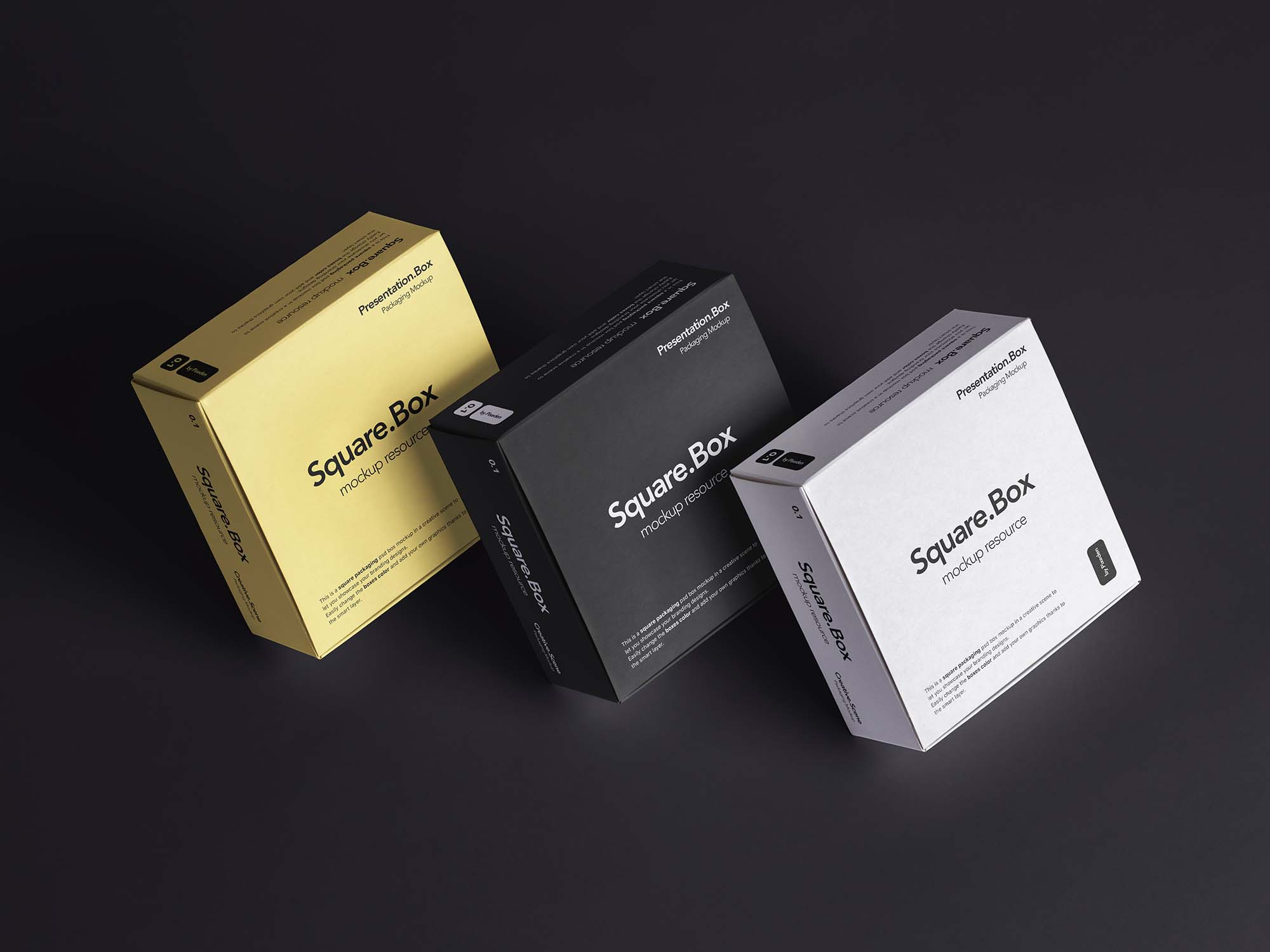 Square Box Package Mockup 1