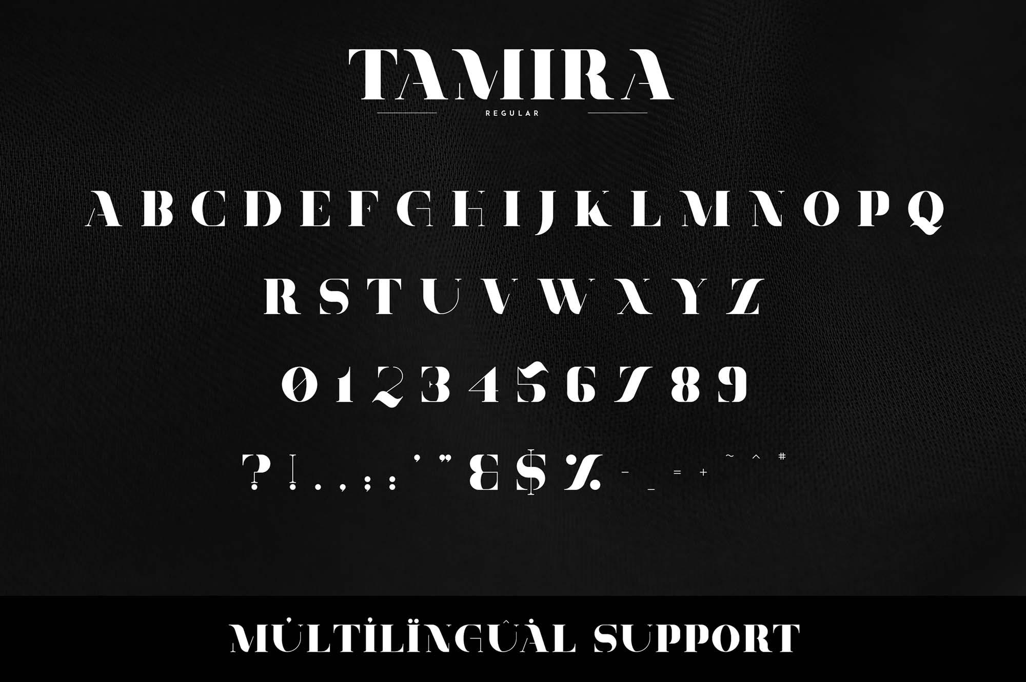 Tamira Serif Font 6