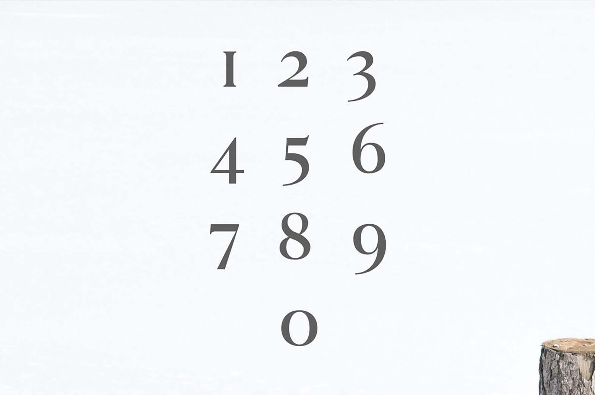Hyogo Modern Serif Font Numbers