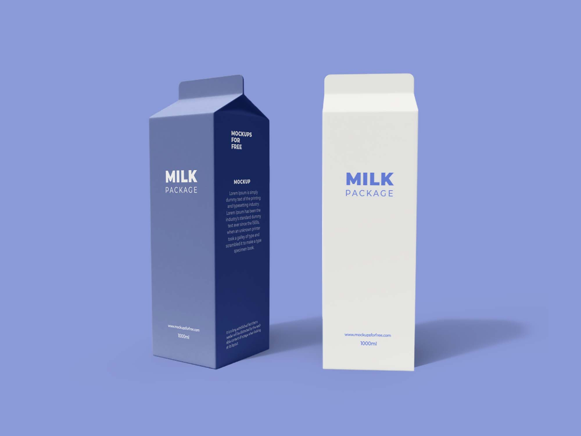 Tetra Pack Packaging Mockup 2