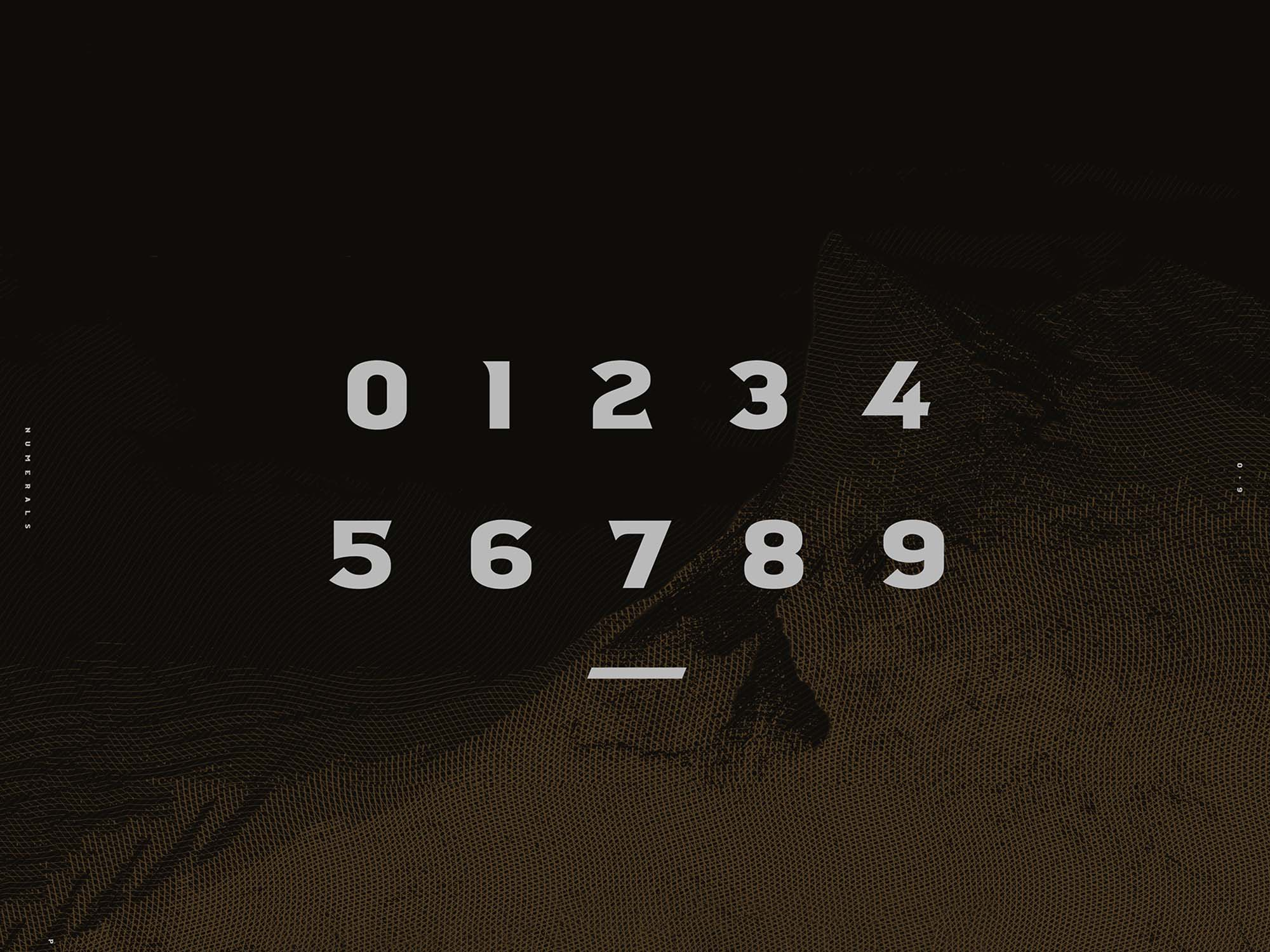 Crossfit Font Family Numerals