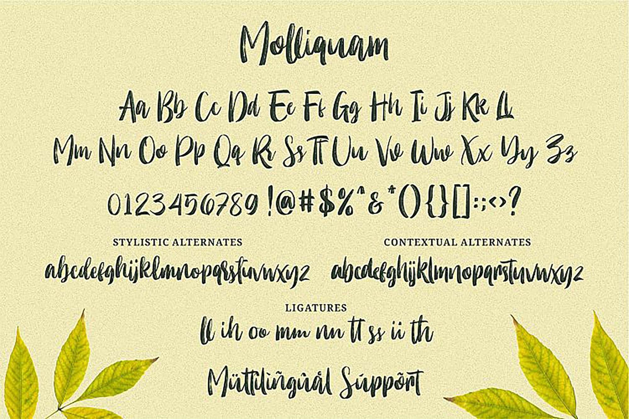 Molliquam Brush Font 3