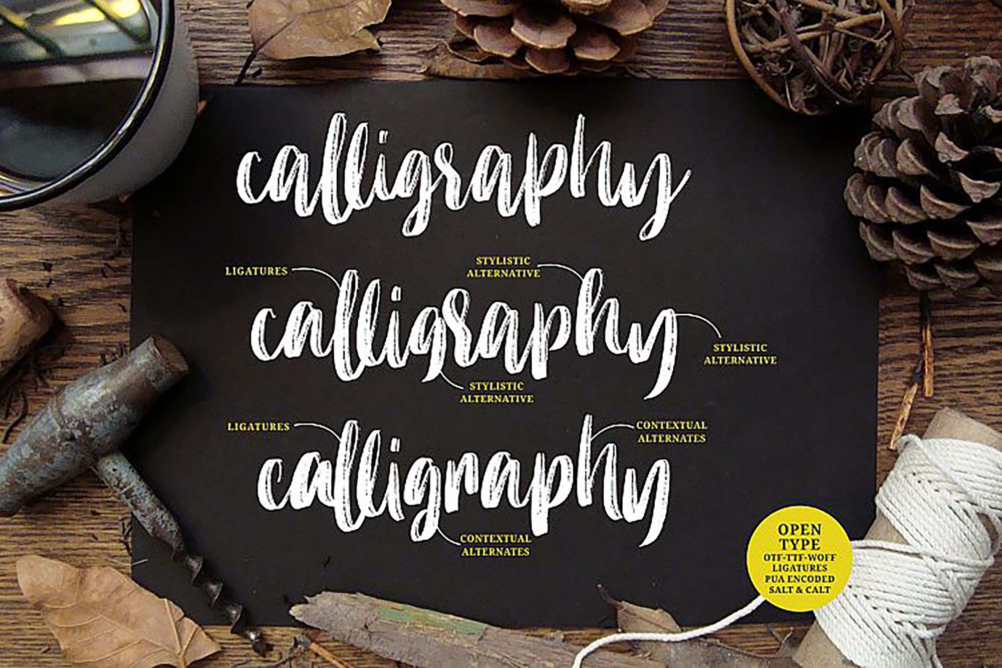 Molliquam Brush Font 5