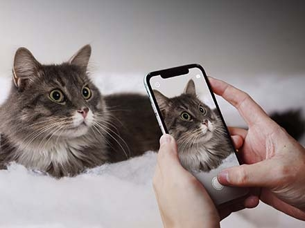 iPhone X Held by a Pair of Hands Mockup