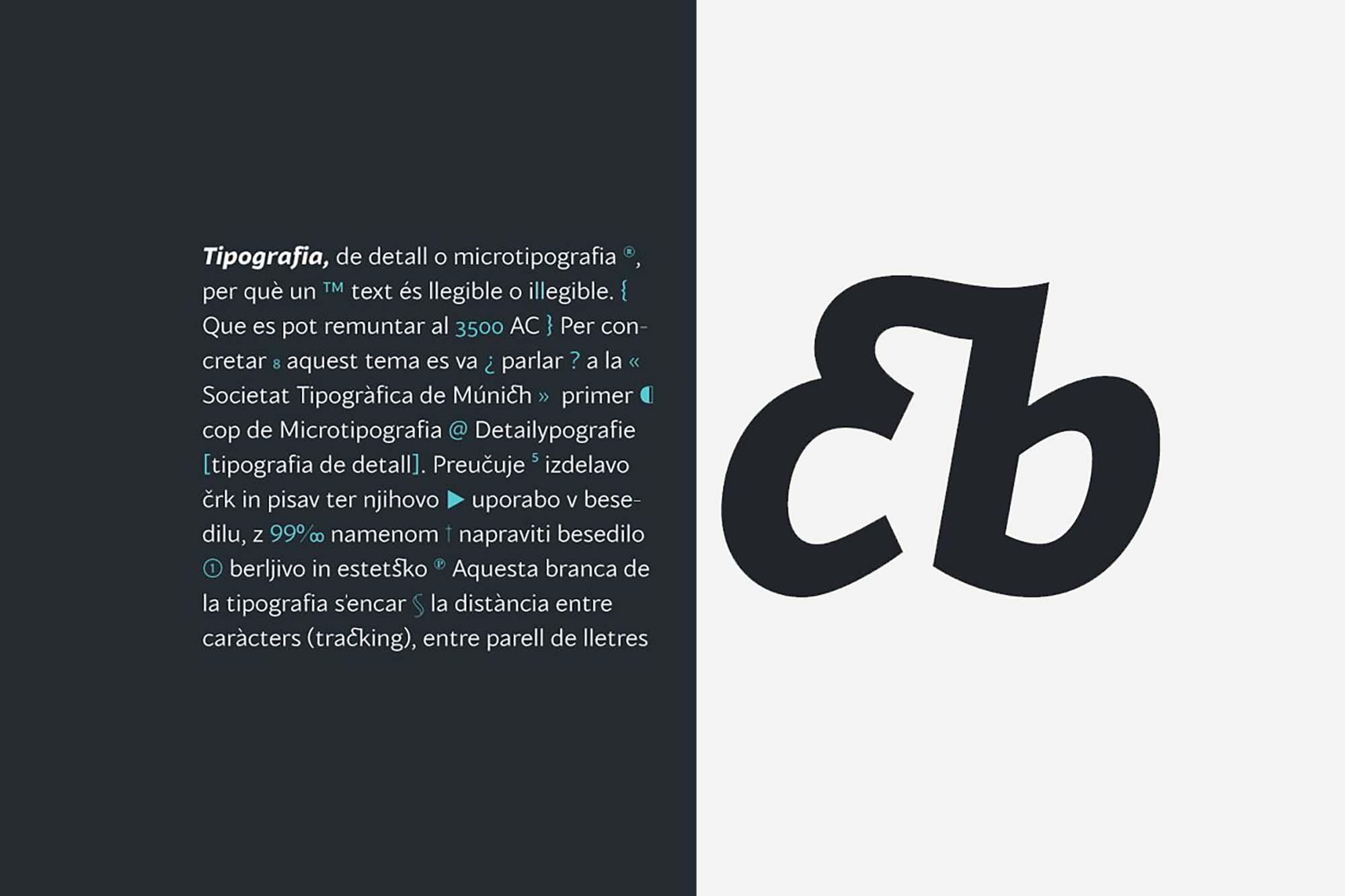 Blacker Sans Font Family 7