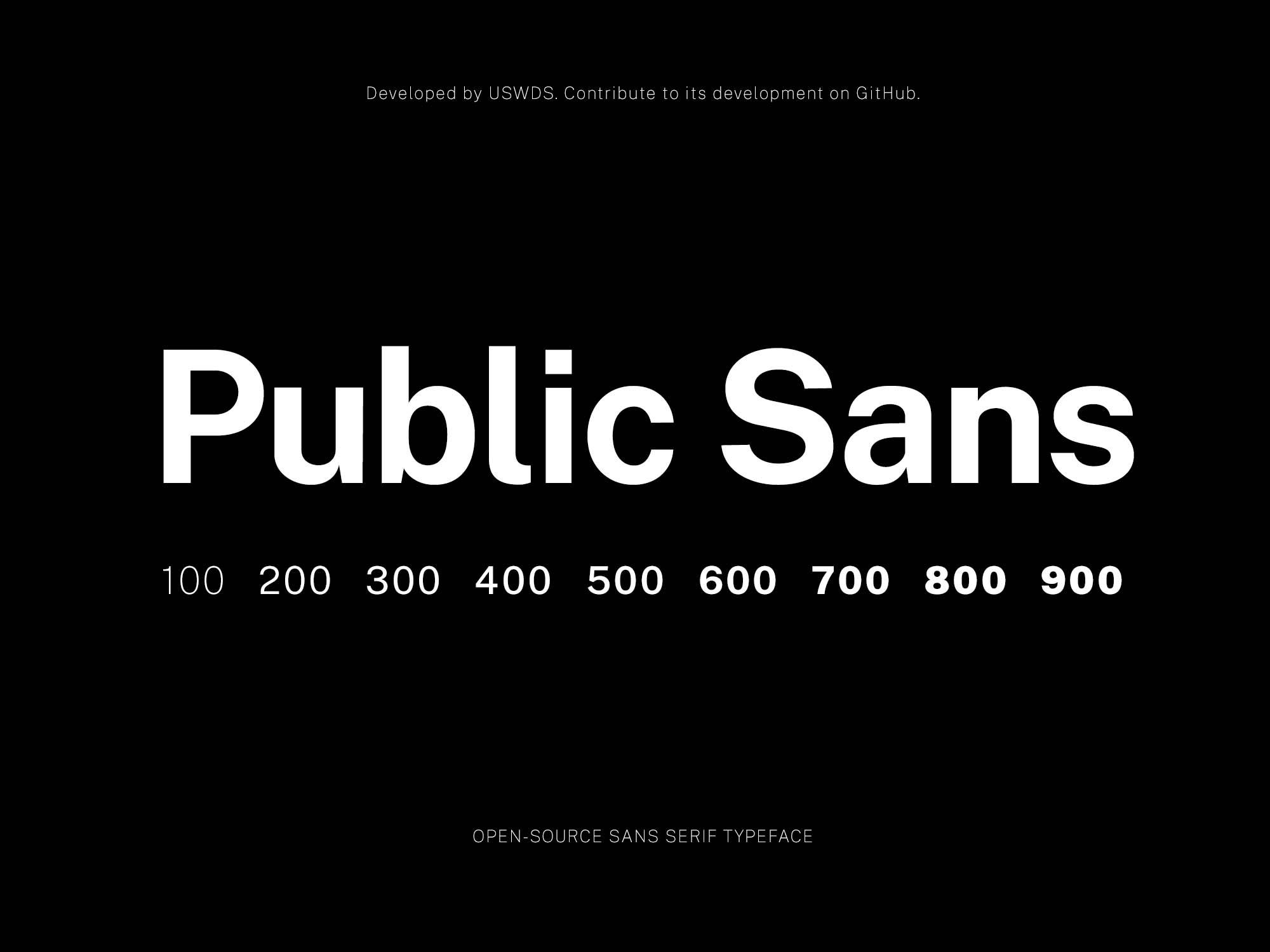 Public Sans Typeface