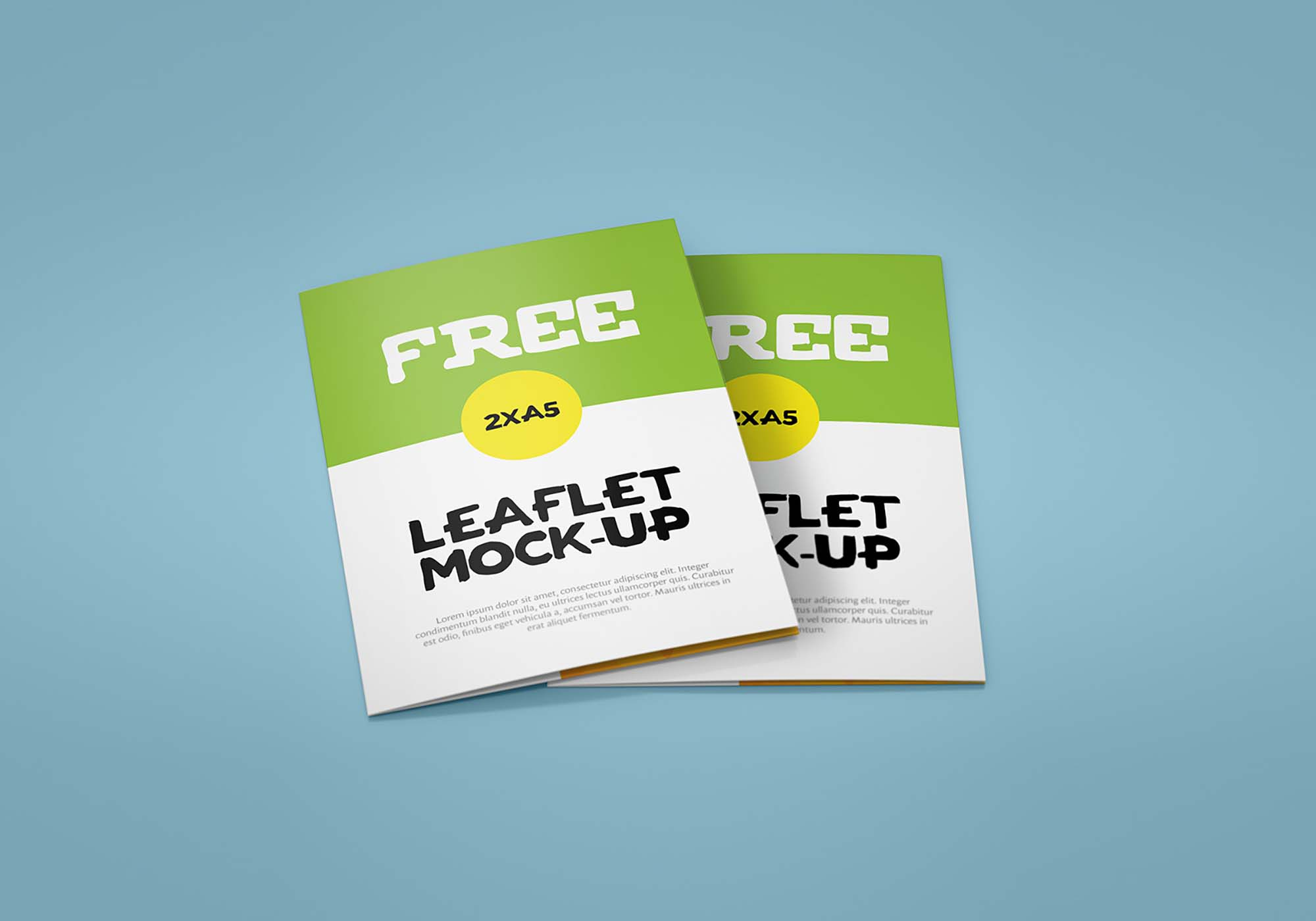Bifold Leaflet Mockup 5