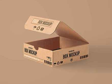 Carton Packaging Box Mockup