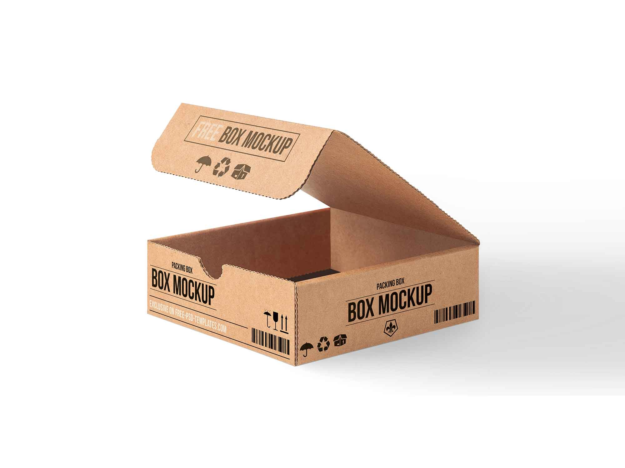 Carton Packaging Box Mockup 2
