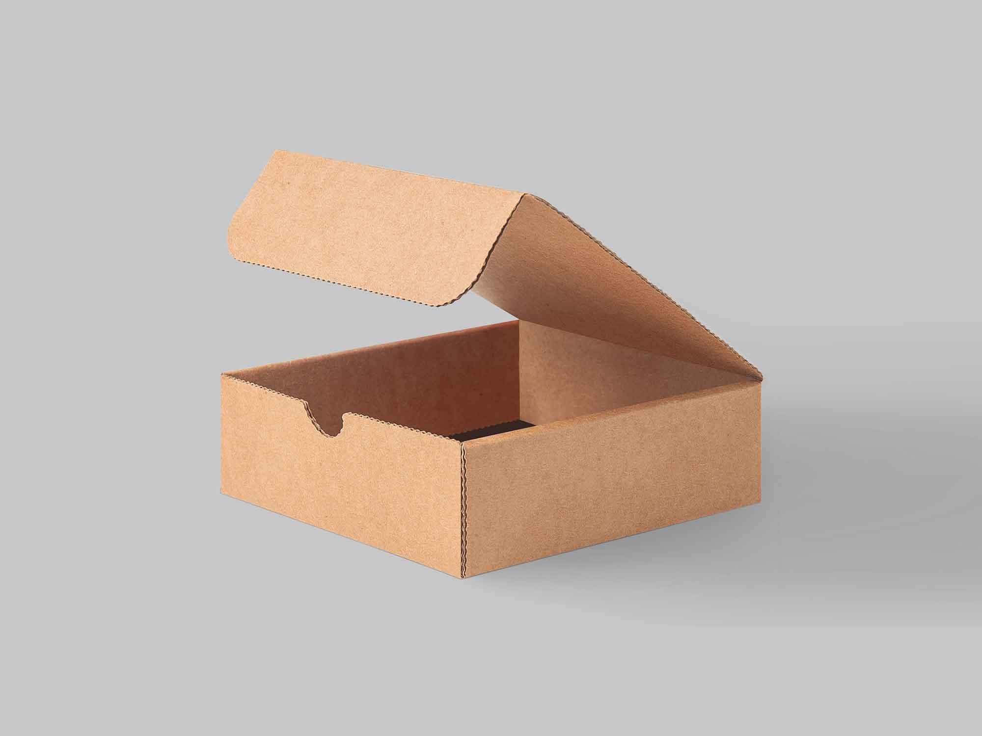 Carton Packaging Box Mockup 3