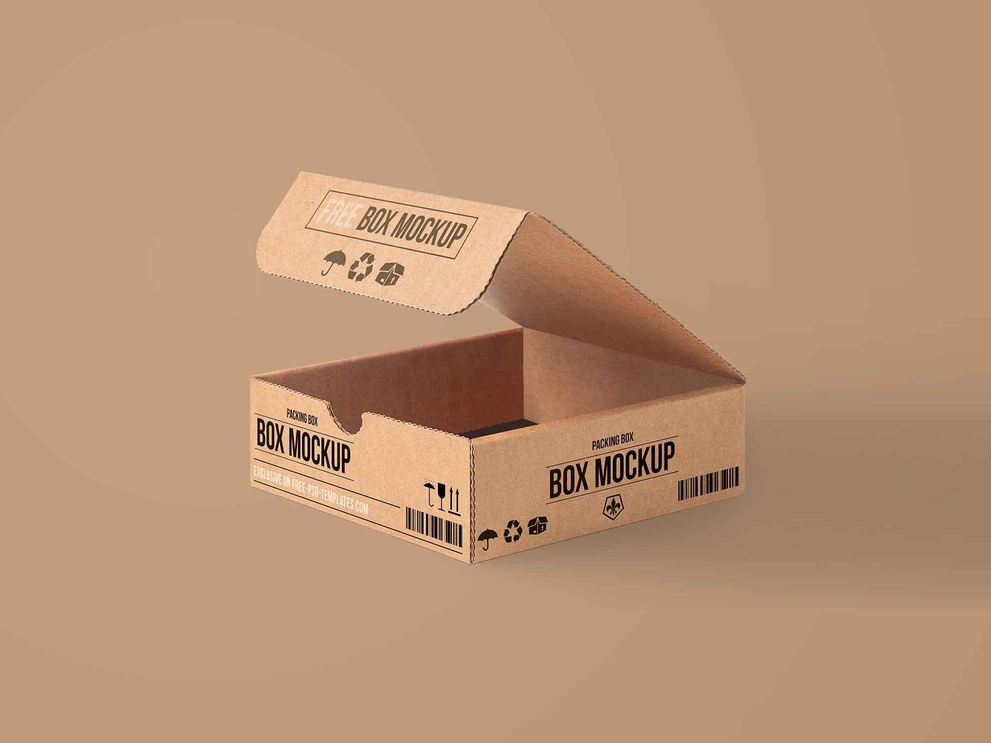 Carton Packaging Box Mockup