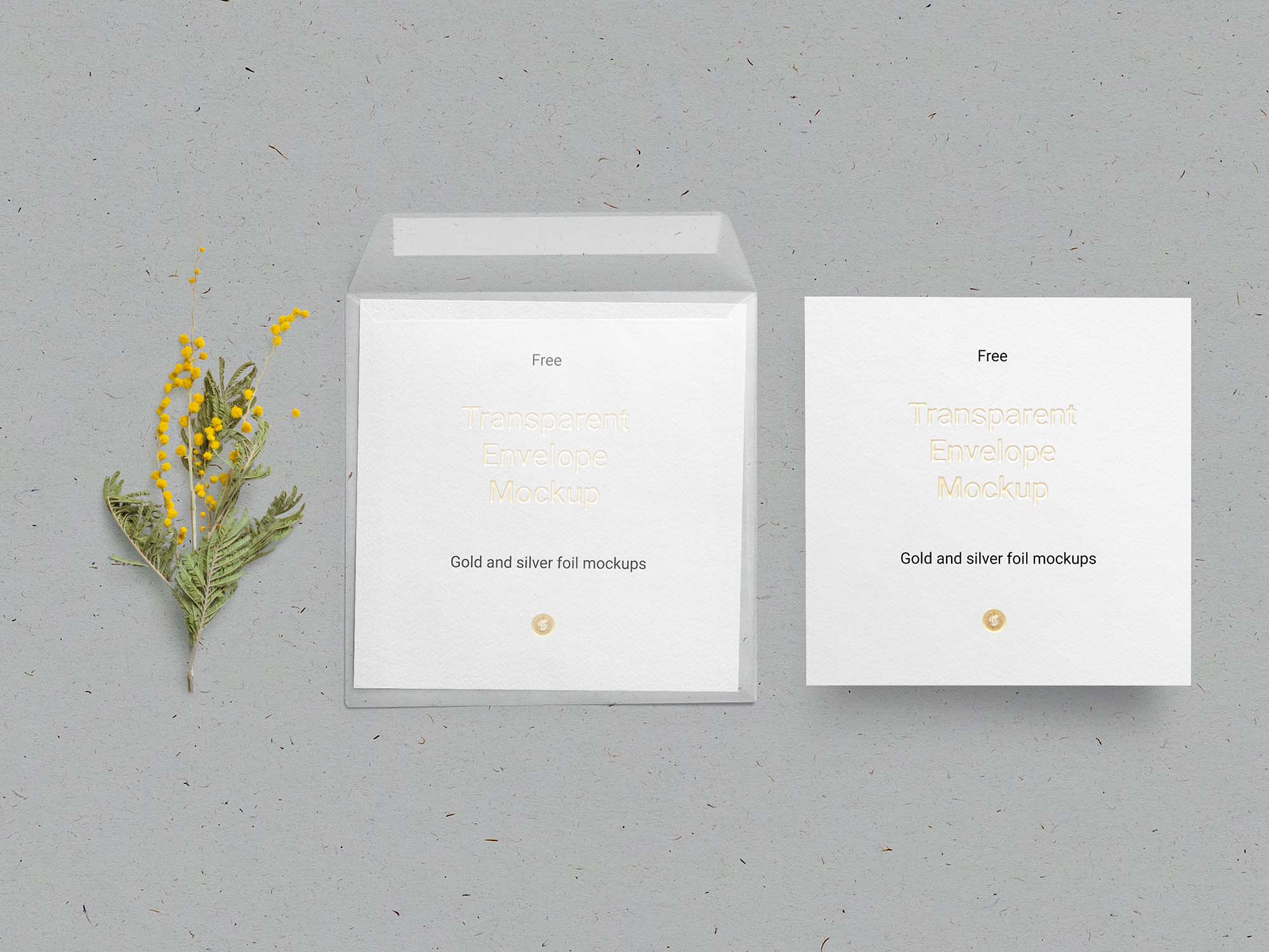 Envelope & Card Mockup 2