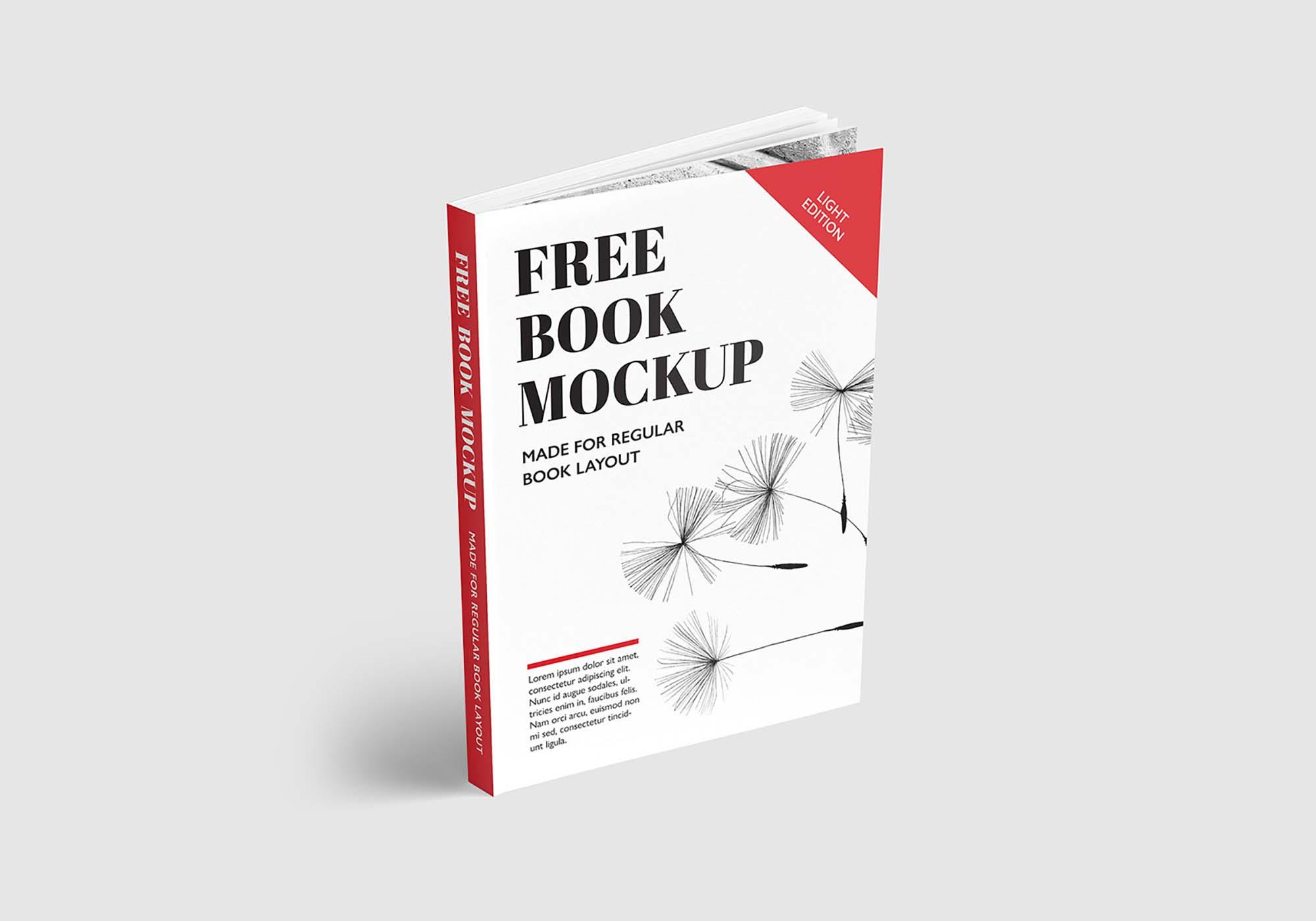Regular Book Mockup 4