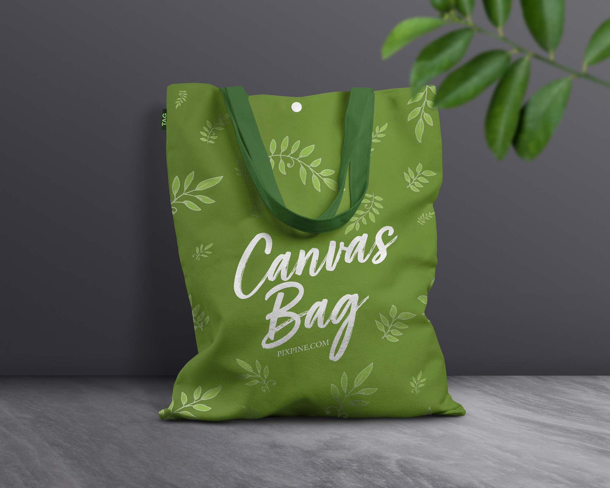 Canvas Bag Mockup 2