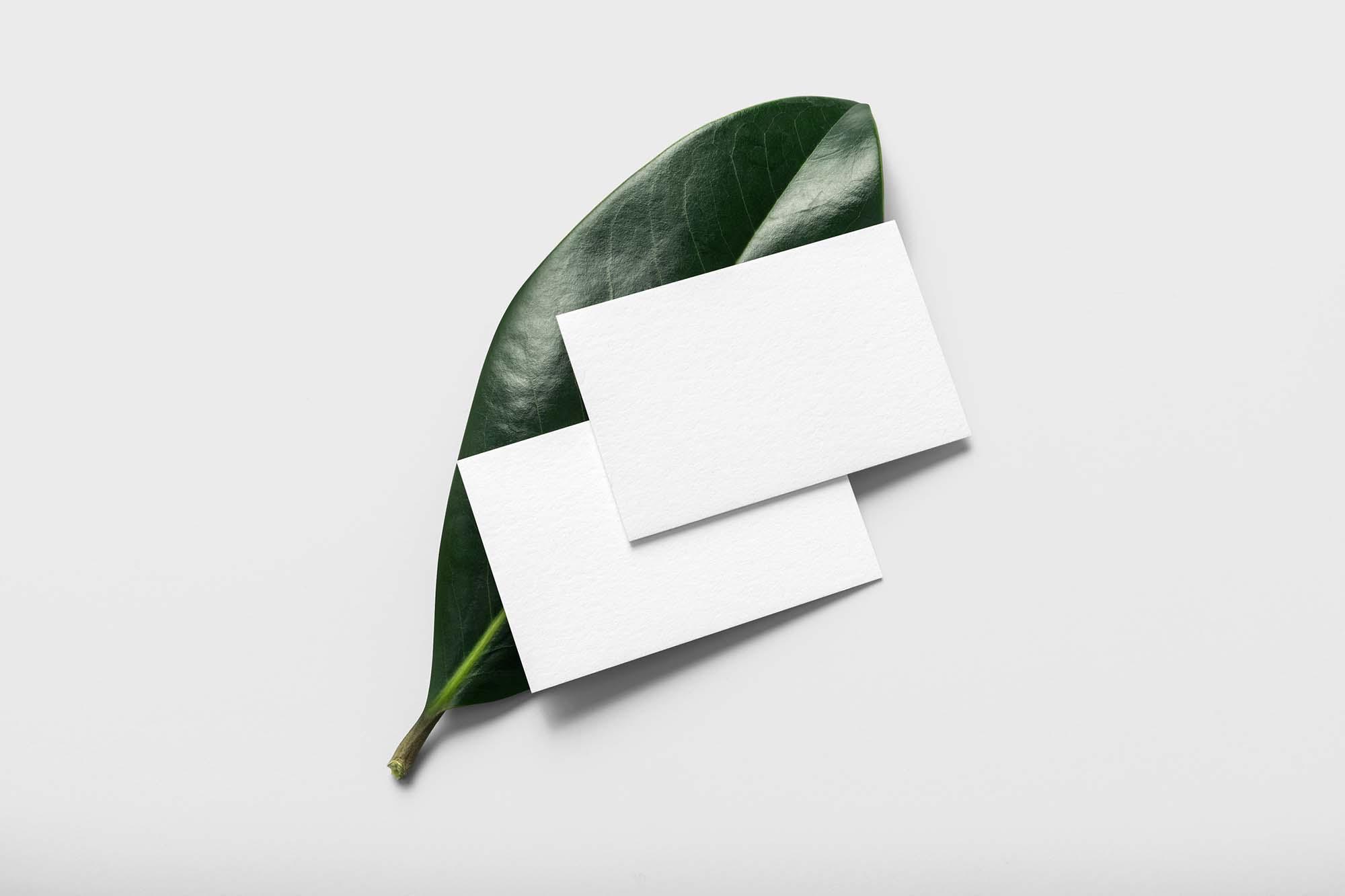 Business Card on Leaf Mockup 2