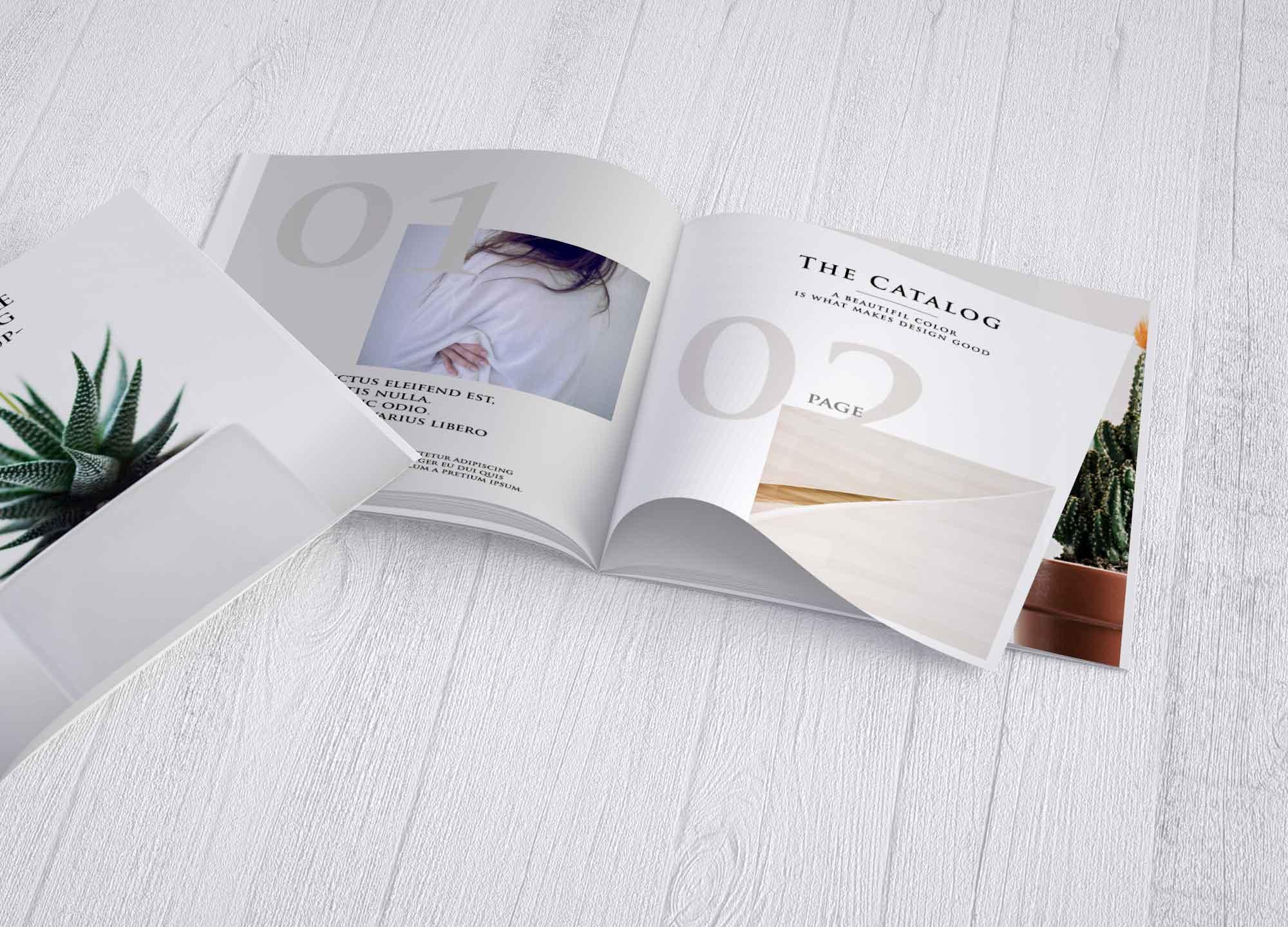 Catalog Brochure Mockup
