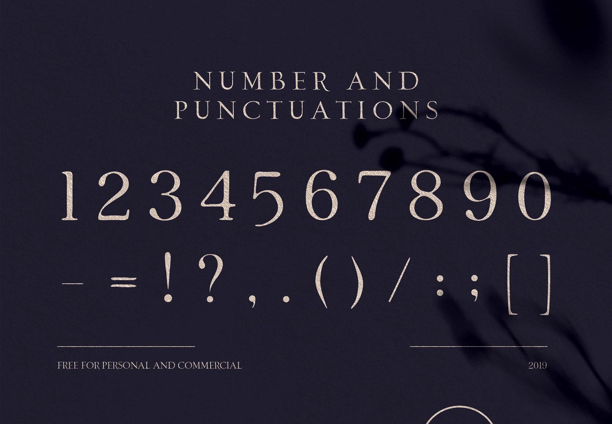 Loki Serif Font 4