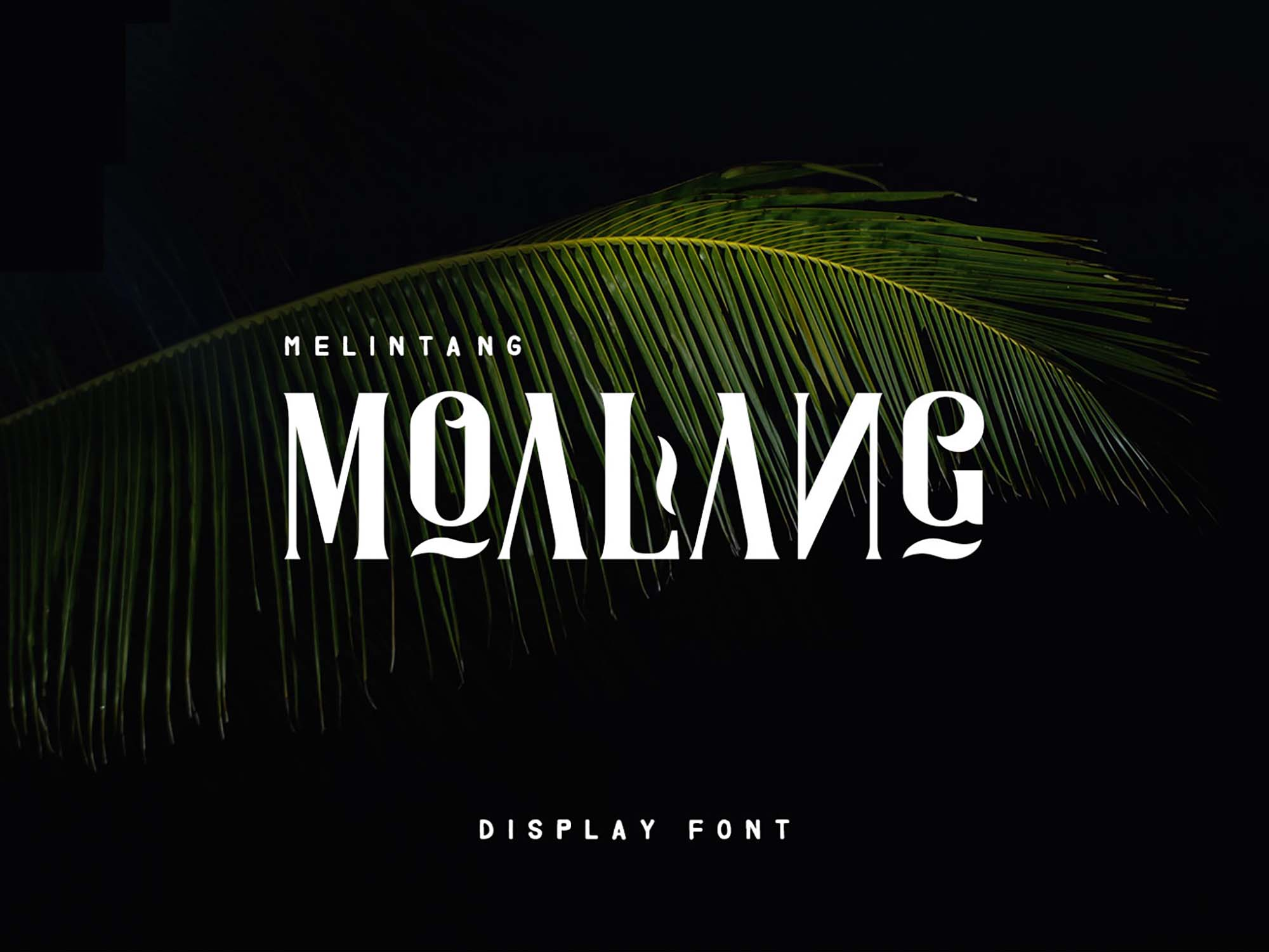 Moalang Display Font