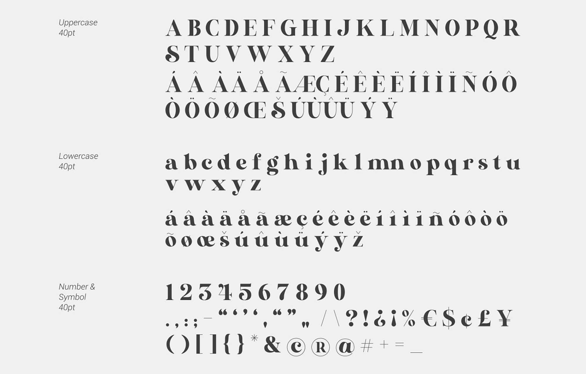 Nervada Serif Font 6