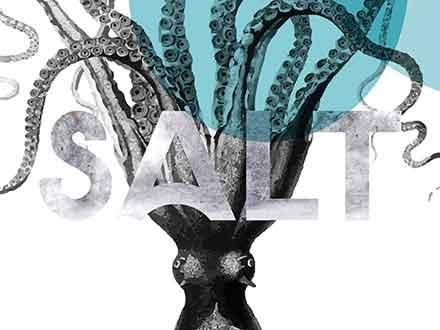 Salt Sans Serif Font