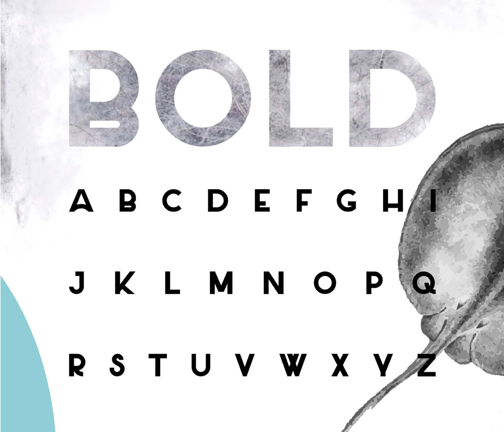 Salt Sans Serif Font Bold