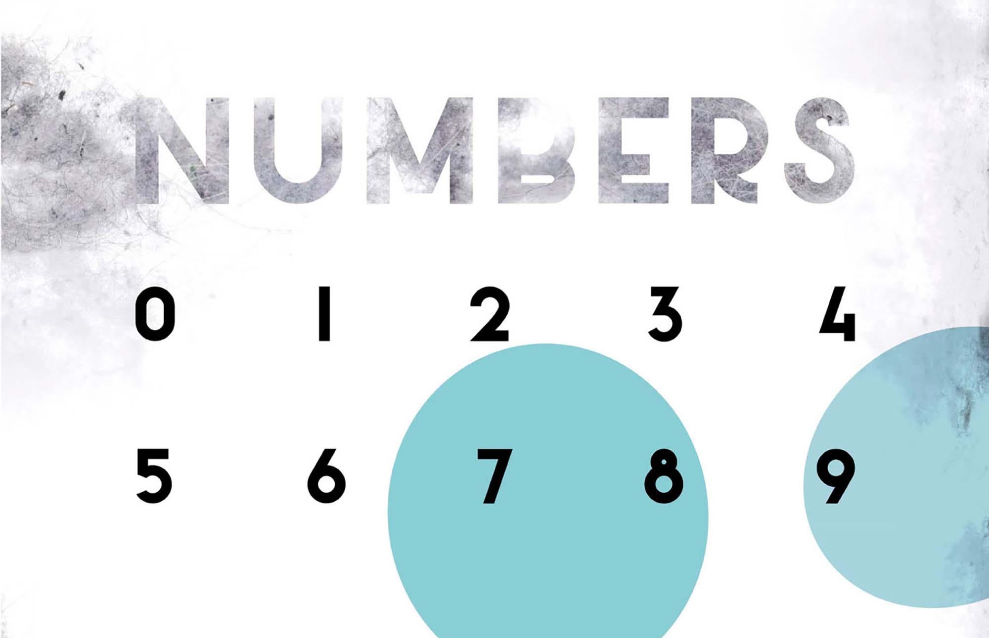 Salt Sans Serif Font Numbers