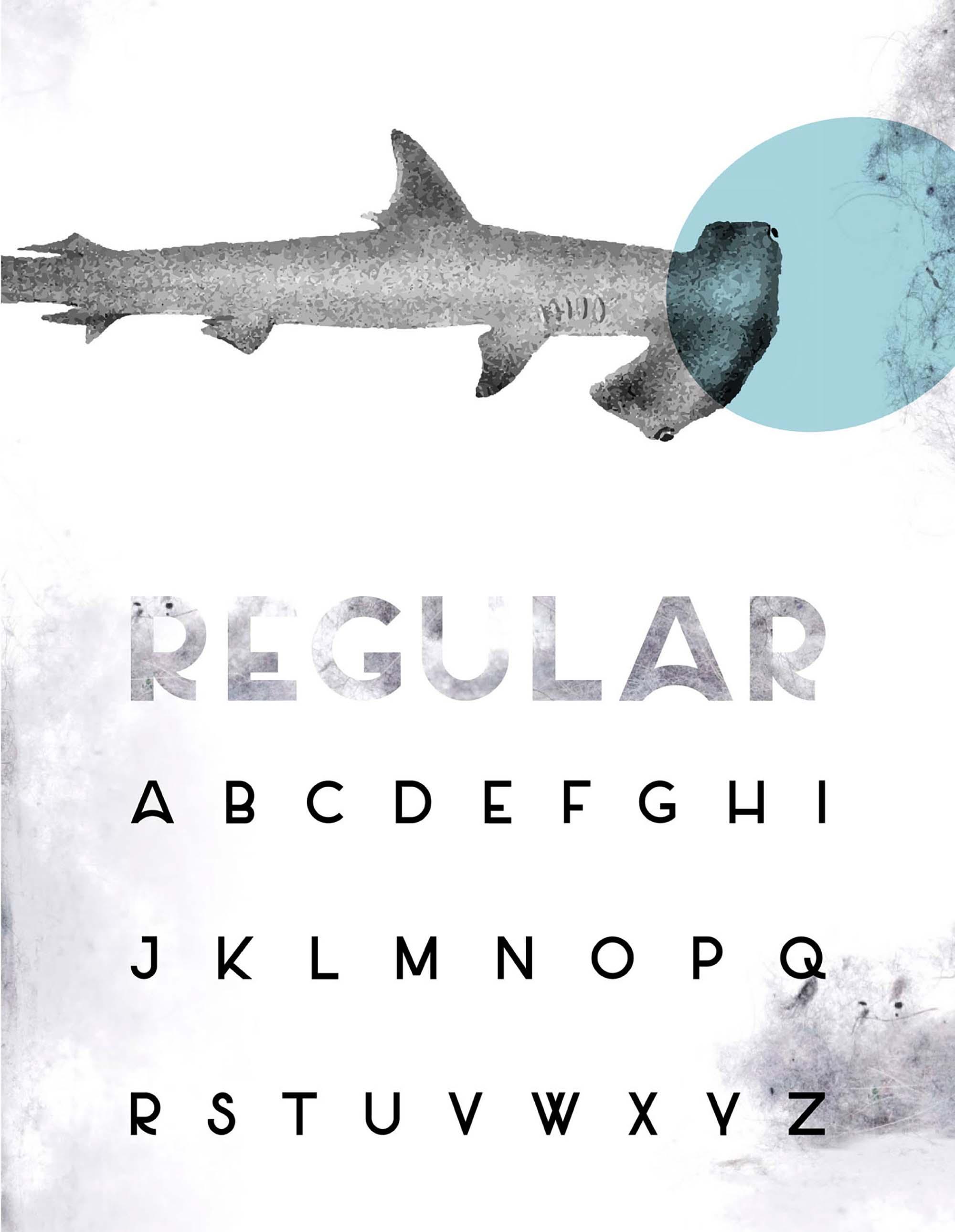 Salt Sans Serif Font Regular