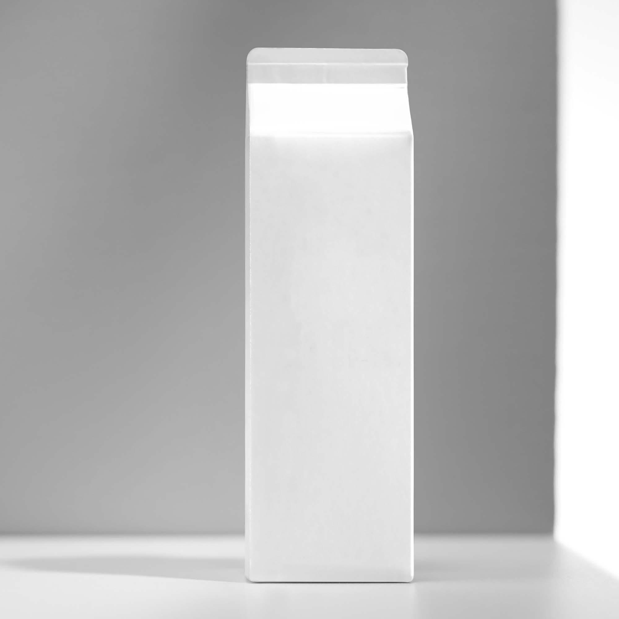 Milk Carton Mockup 2