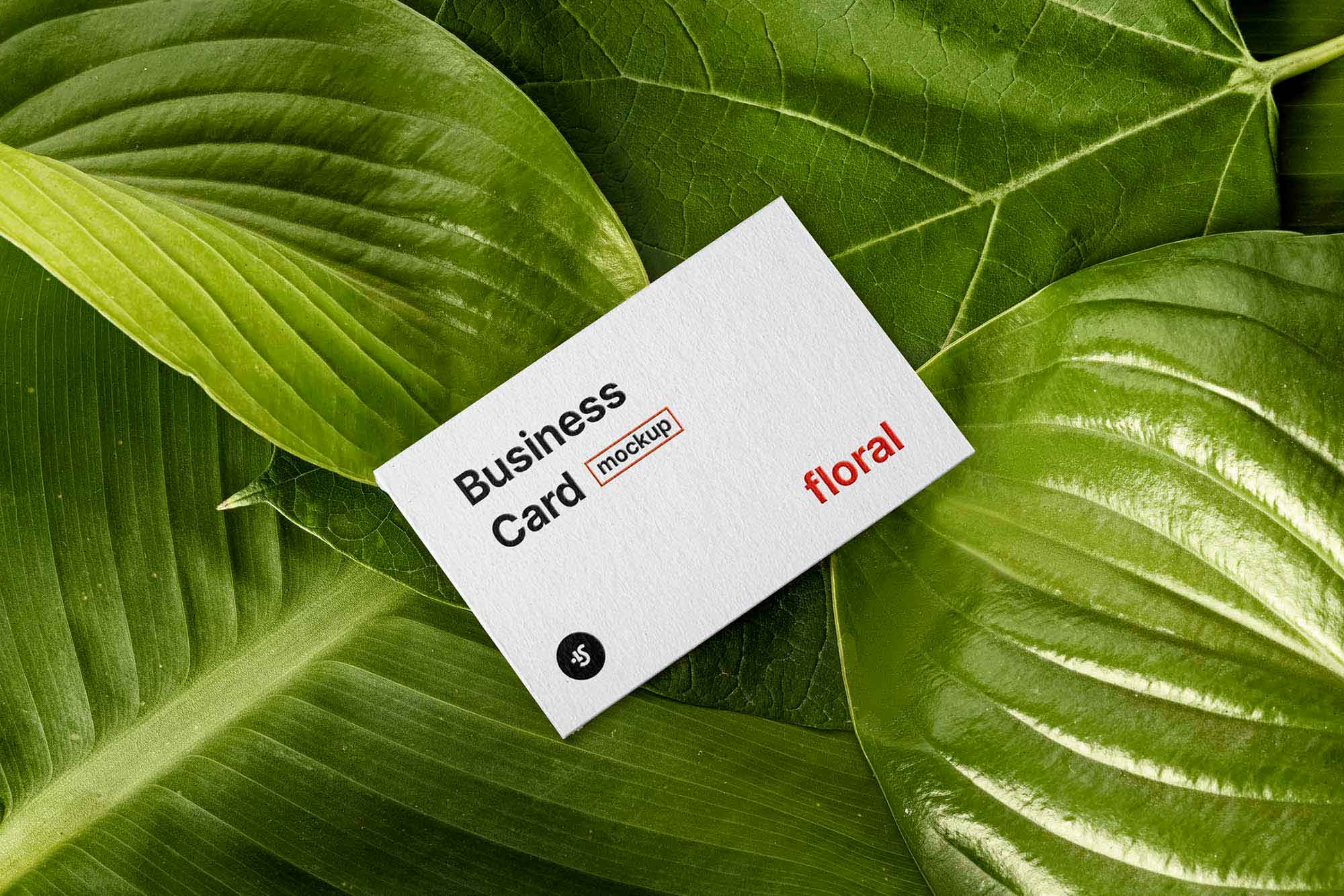 Floral Business Card Mockup